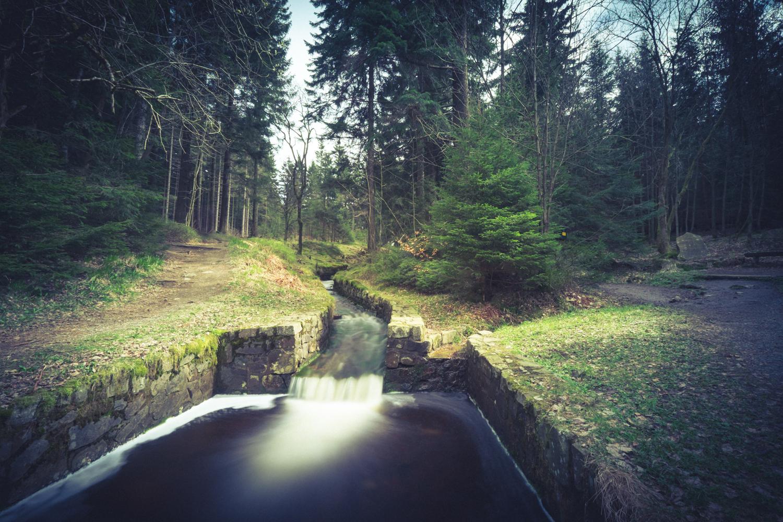 Damgraben-Altenau-3