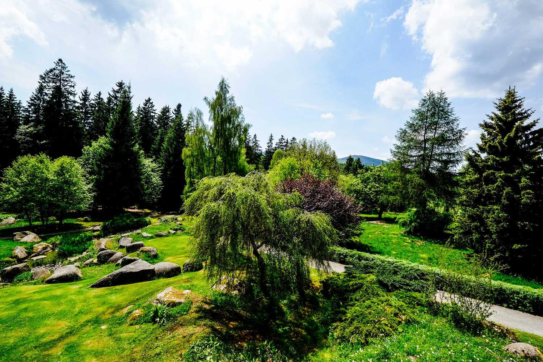 Kurpark Schierke 3